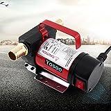 12V pompe à carburant électrique DC unidirectionnelle 40L/min 160W