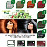 "100% NATURAL HENNA COLOR CREAM HERBAL HAARFARBE ""Herbal Time"""