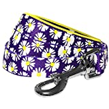 Blueberry Pet Valentine Summer Loving Daisy Prints Dog Lead with Soft & Comfortable Handle, 120 cm x 2.5cm, Large, Leads for Dogs, Matching Collar & Harness Available Separately