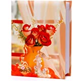 natraj album Photo 100 Pocket (4 X 6 Inch)