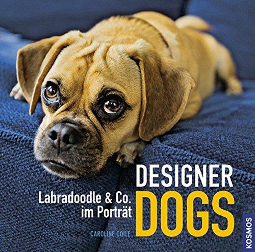 Designer Dogs: Labradoodle & Co. im Porträt -