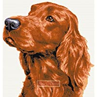 Red Setter kit punto croce