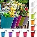 Allright 10 Stück Hängetöpfe Blumentöpfe mit Haken Metall Hängend Balkontopf Pflanztopf Set für Balkon Fenster von oem - Du und dein Garten