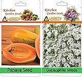 alkarty papaya and gypsophila seeds (20 seeds each)