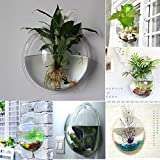 FreshGadgetz Interno / esterno pianta in vaso da parete in plastica rara moderna