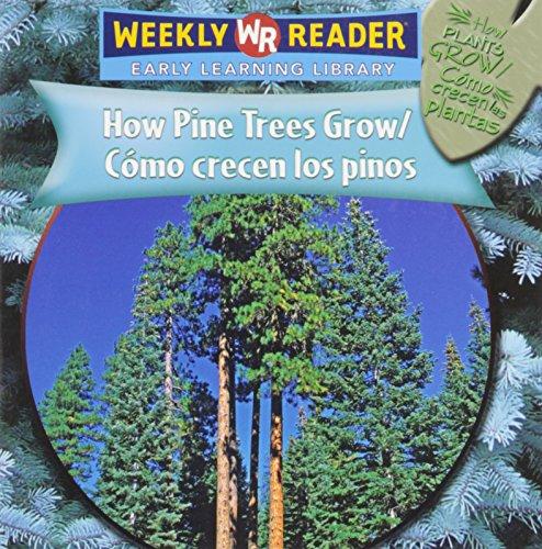 How Pine Trees Grow/como Crecen Los Pinos (How Plants Grow/como Crecen Las Plantas)