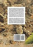 Image de La vigna, il vino e la biodinamica