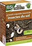 SOL INSECT INSECTICIDE GRANULE CONTRE LES INSECTES SOL 300GR