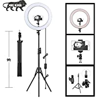 """Owme 10 Inches Big LED Ring Light for Camera, Phone tiktok YouTube Video Shooting and Makeup, 10"""" inch Ring Light with 7…"""