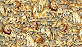 Fat Quarter Safari Löwen Scenic Muster 100% Baumwolle