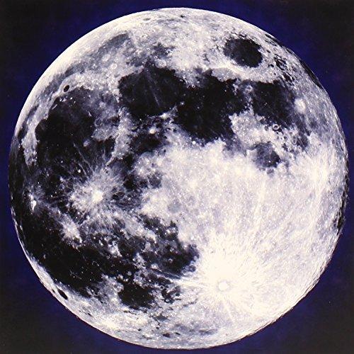 Moon by Rumpke Mountain Boys (2013-08-14)