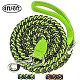 Mycicy Starkes Seil Hunde Leine, 4feet Silikon Anti - Slip Mit Weich Gepolsterte Griff und High Reflective Außerhalb für Kleinen Hunde Ausbildung Leine(Grün/10mm*1,2m)