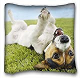 My Honey federa cuscino di cane Jack Russell Terrier Grass 18in * 18Twin sides