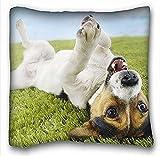 Die besten 14k Schmuck Cleaners - My Honey Kissen Kissenbezug Hund Jack Russell Terrier Bewertungen