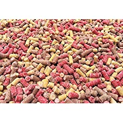 Pet Performance 5kg Premium High Energy Mixed Mealworm Berry & Insect Suet Pellets - Wild Bird Food Treat