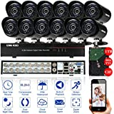 OWSOO 16CH Kanal Voll 800TVL CCTV Überwachung DVR Security System HDMI P2P Cloud Network Digital Video Recorder + 1TB Festplatte + 12 * Outdoor/Indoor Infrarot-Bullet-Kamera + 12 * 60ft Kabel