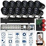 OWSOO CCTV Überwachung DVR Sicherheitssystem 16CH Kanal voll CIF 800TVL HDMI P2P Cloud Netzwerk DVR + 1 TB Festplatte + 12 * Outdoor Indoor Infrarot Kugel Kamera + 12 * 60ft Kabel