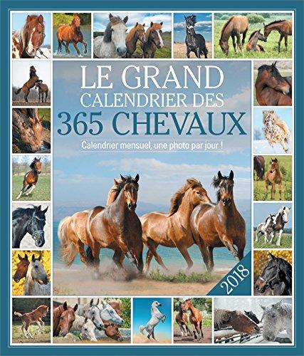 Le grand Calendrier des 365 chevaux 2018 (Grands calendriers) por Collectif