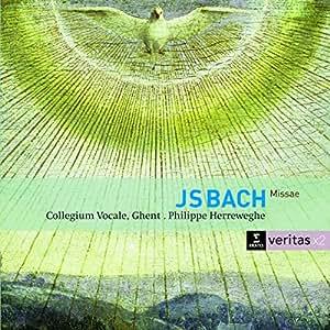 Bach: Masses BWV 233-236; Sanctus BWV 238