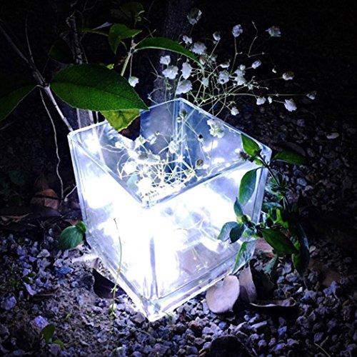 sunnymi 1M String Fairy Licht 10 LED Batteriebetriebene Birne Hängende Wasserdichte Outdoor Garten Camping LED Glühbirne Weihnachten Lichter Party Hochzeit Lampe (Kaltes Weiß)