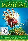 DVD Cover 'Die letzten Paradiese - Indischer Ozean - Im Paradies der Korallengärten der Malediven