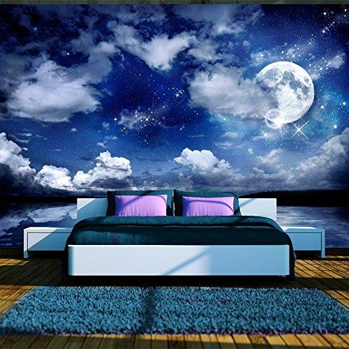 *murando – Fototapete Nachthimmel 300×210 cm – Vlies Tapete – Moderne Wanddeko – Design Tapete – Wandtapete – Wand Dekoration – Landschaft Mond blau 10110903-27*