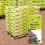 Bio Pflanzerde torffrei auf Palette - 60 Sack à 40 Liter Blumenerde ohne Torf in Bio-Qualität - biologisches Naturprodukt - Kölle€™s Bio Pflanzerde torffrei