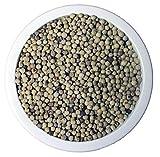 Pfeffer weiß ganz 500 g ~ gentechnisch unverändert ~ unbestrahlt ~ PEnandiTRA®