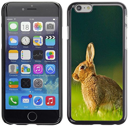 Graphic4You Niedlich Niedlich Kaninchen Hase Tier Design Harte Hülle Case Tasche Schutzhülle für Apple iPhone 6 Plus / 6S Plus Design #6