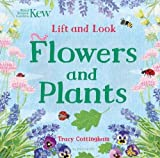 #8: Kew: Lift and Look Flowers and Plants (Bloomsbury Activity Books)