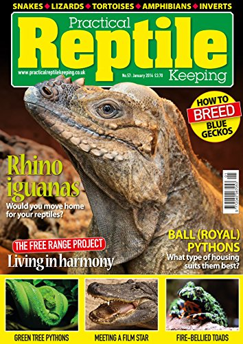 Practical Reptile Keeping - January 14 (English Edition) (Tree Python-pet Green)