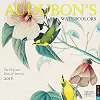 Audubon's Watercolors 2016 Calendar: The Original Birds of America - America Del Wall Calendar