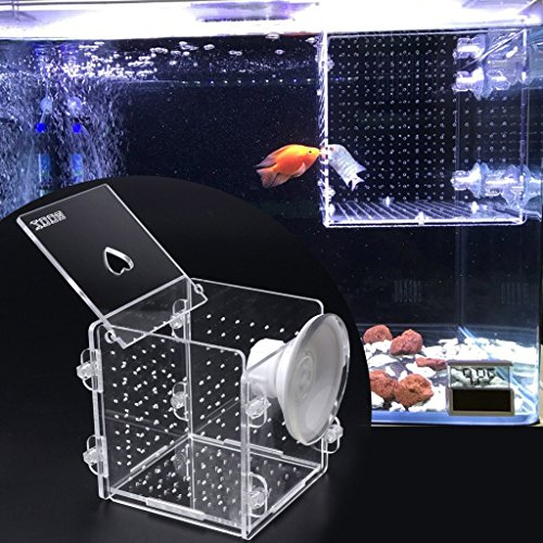 ECMQS fischzucht Forelle, Transparent Kunststoff Fisch Züchter Box Fischei Brutstätte Jungfisch Isolation Box (Züchter-box)