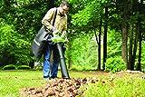 Greenworks Tools 24227 Cordless Brushless Blower, 40 V, Green