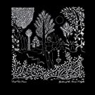 Garden Of The Arcane Delights+Peel Sessions [Vinyl LP]