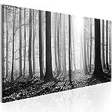 murando - Bilder Wald 135x45 cm - Leinwandbilder - Fertig Aufgespannt - Vlies Leinwand - 1 Teilig - Wandbilder XXL - Kunstdrucke - Wandbild - Waldlandschaft Natur Wald Panorama Baum schwarz-weiß grau c-B-0235-b-a