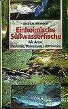 Einheimische Süßwasserfische. Alle Arten: Merkmale, Verbreitung, Lebensweise - Andreas Vilcinskas
