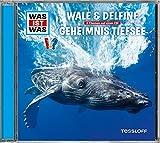 Folge 13: Wale & Delfine/Geheimnis Tiefsee