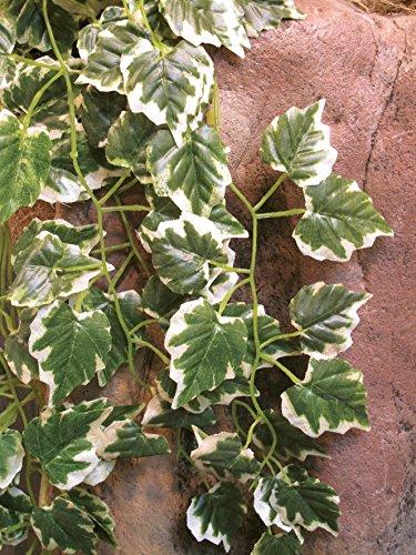 Namiba Terra 5949 Hängepflanze Efeuranke, 70-75 cm Seide, gelb-grün
