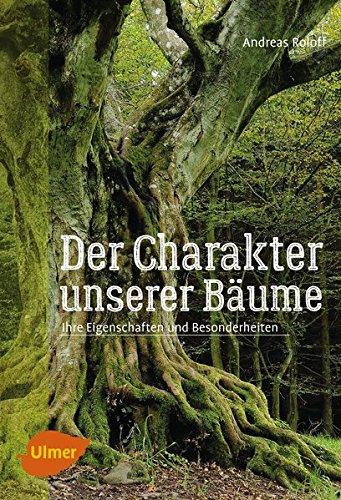 Der Charakter unserer Bäume: Ihre Eigenschaften und Besonderheiten