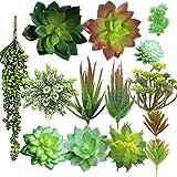 Aisamco 14 Pz Piante Succulente Artificiali Misti Artificiali Piante Succulente Fiori Uncotted Faux Fiore Succulente Mini Prese Bulk Steli per La Casa Giardino Decorazioni