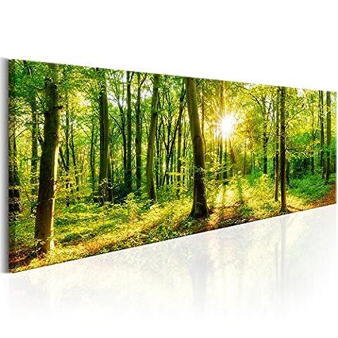 murando Bilder Wald 135x45 cm - Leinwandbilder - Fertig Aufgespannt