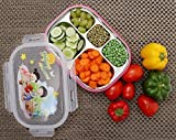 Kurtzy Stainless Steel Lunch Snacks Boxes with 5 Compartments Heat Resistant Containers
