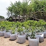 ILOVEDIY 17 Gallonen Pflanzsack mit Henkeln Pflanztasche Töpfe Grow Bag Plant aus Vliesstoff (17 gallon with handles)