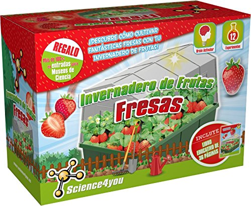 Science4you - Invernadero de Frutas: Fresas - Juguete Educativo y científico