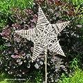 Videx Dekostecker Rebengeflecht, Stern, natur-grau, Ø 35cm, H: 95cm von VIDEX GmbH & Co. KG - Du und dein Garten
