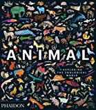 Animal : Exploring the zoological world