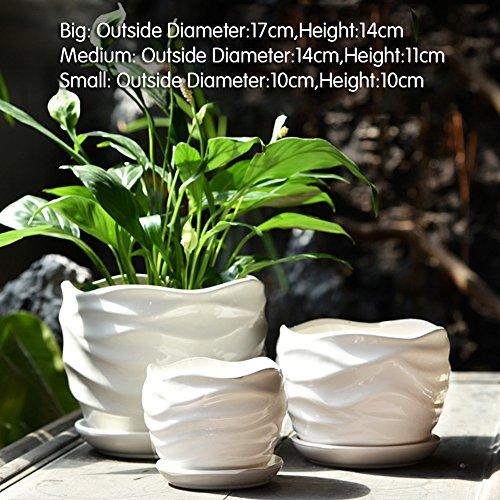 Nclon Dekorative Design Keramikplatten Pflanze Blume Pflanzer Töpfe,Erlassen Superior...