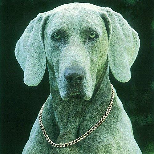 original-copper-therapy-dog-collar-19