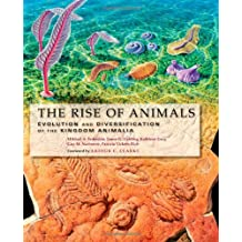 The Rise of Animals: Evolution and Diversification of the Kingdom Animalia